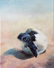 The Newcomer 10x8 Oil on Canvas